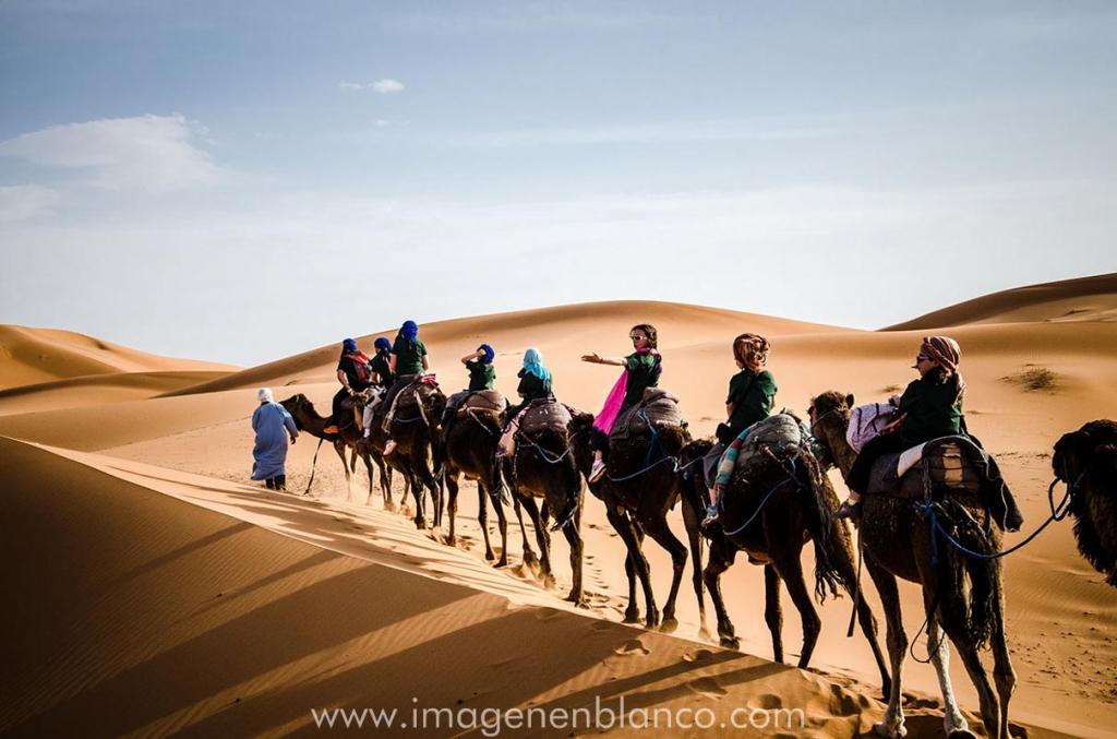 Caravana de dromedarios Marruecos
