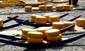 Alkmaar, la ciudad del queso en Holanda
