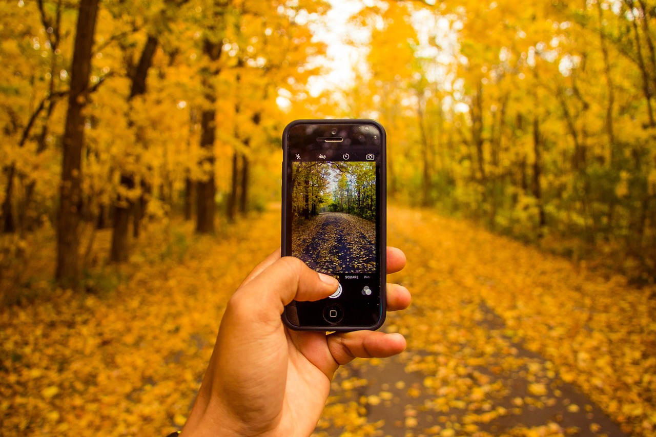 10 Aplicaciones para Viajar en Furgo