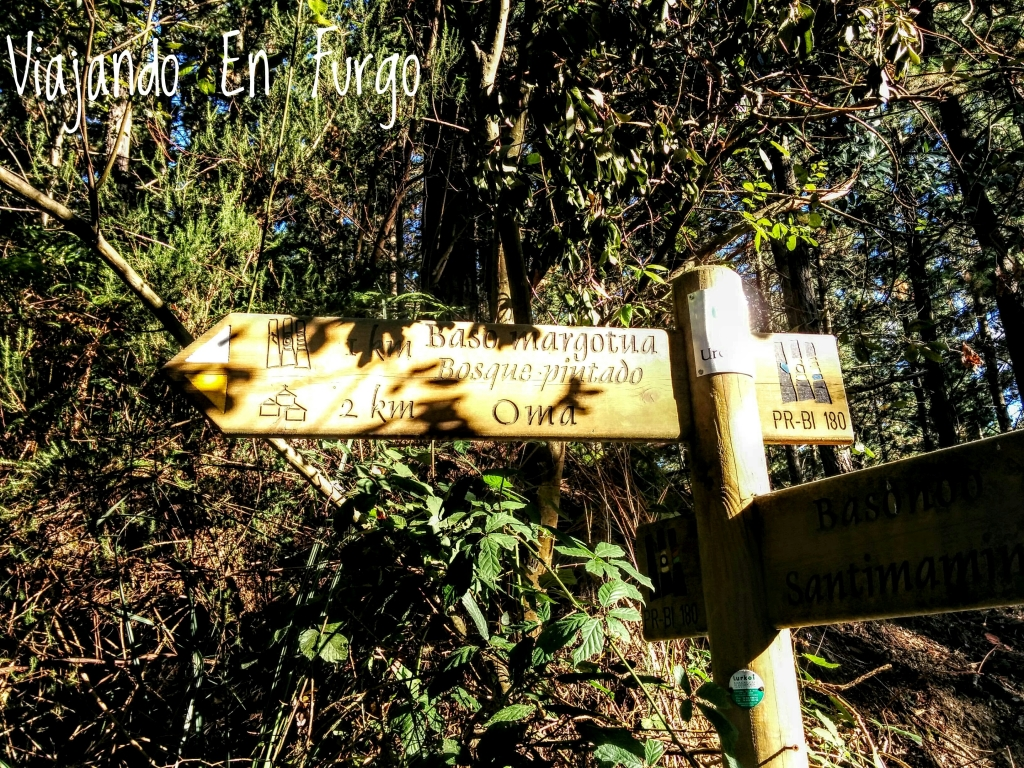 1-km-para-bosque-pintado