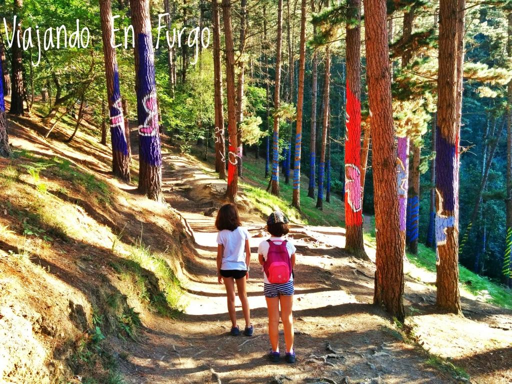caminando-por-el-bosque-de-oma