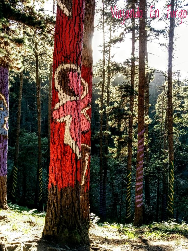 nina-bosque-pintado-de-oma