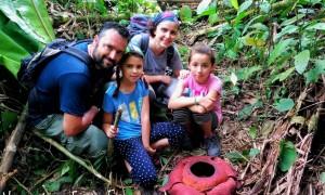 Descubriendo Malasia en familia