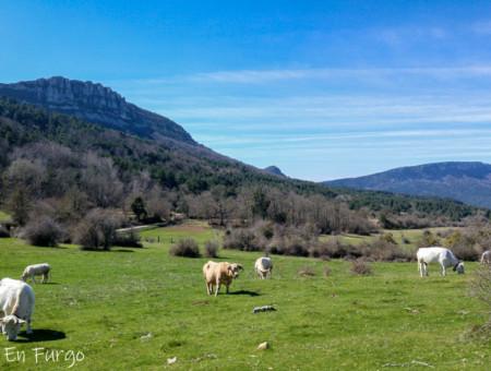 Ruta por el Camino Natural de la Senda del Pastoreo